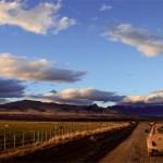 wildes Patagonien Katalog 09-10