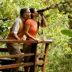 Panama_Birdwatching