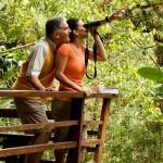 Panama_Birdwatching