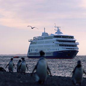 Gletscher Kreuzfahrt zum Spezialpreis