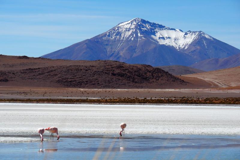 Dieses Lagunen-Bild aus Bolivien gefällt mir besonders gut