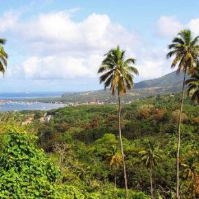 Naturinsel Dominica