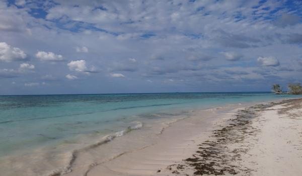 Cayo Jutias auf Kuba